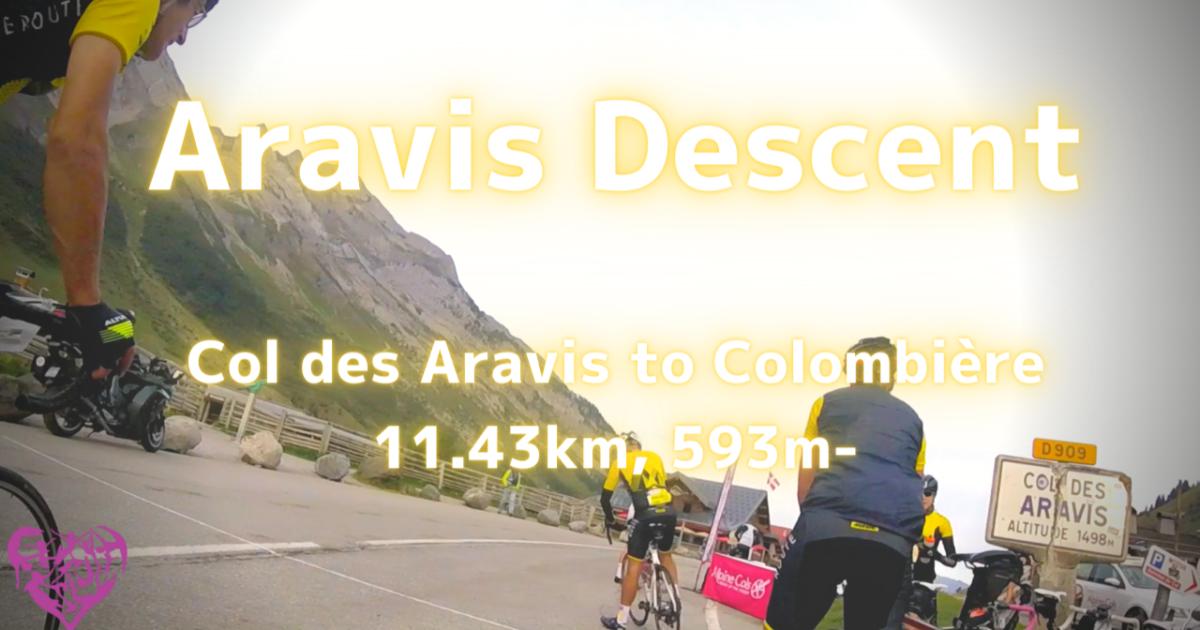 【自転車旅】アルプス山脈編:Aravis to Colombière 〜 Col des Aravis Descent 11.43km, 593m-
